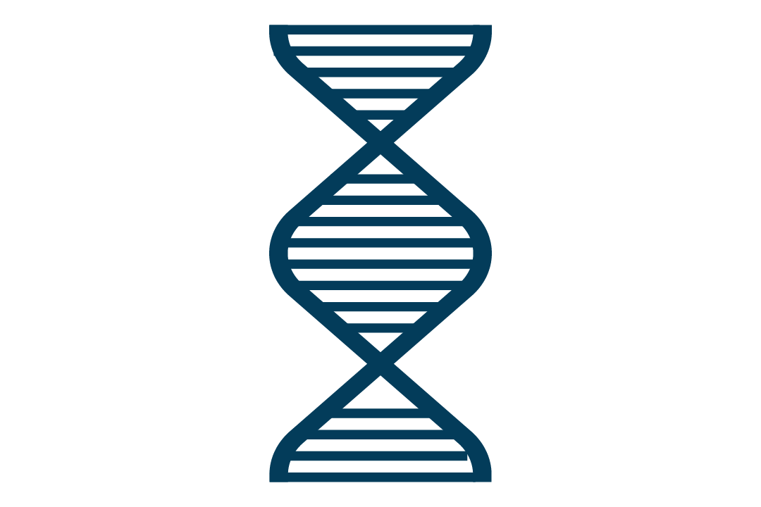 Graphic of a DNA double helix